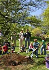 Children Planting a Tree on Arbor Day