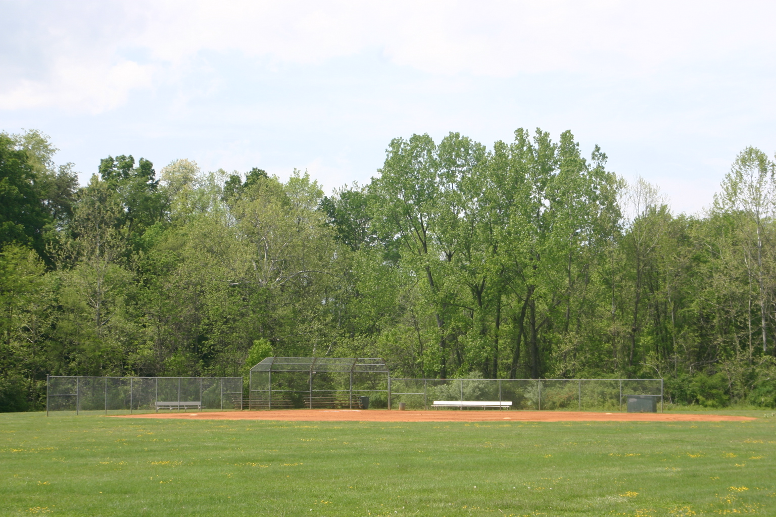 Basic Park ball field